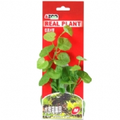 Real Plant-Fabric Leaves
